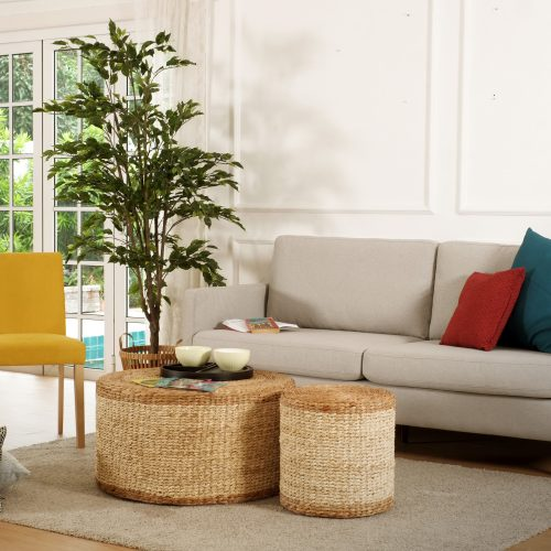 Decorate Your Home with Tips from the Experts